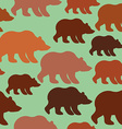 Brown bear seamless pattern Background of wild vector image vector image