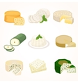 Cheese varieties vector image