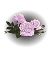 design flowers vector image