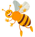 funny honey bee insect comic animal character vector image
