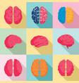 genius brain icon set flat style vector image vector image