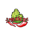 mexico lettering with green letters and red pepper vector image vector image