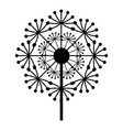 natural dandelion icon simple style vector image vector image