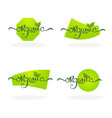 organic product natural and vegan lettering for vector image vector image