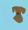 portrait of a dog dachshund look down vector image vector image