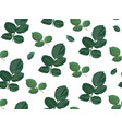 rose leaves with thorns seamless pattern vector image