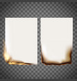 set burning sheet vector image vector image