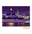 night belgrade vector image