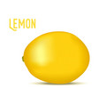 3d realistic lemon yellow fruit vector image vector image