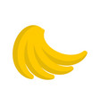 bunch of bananas isolated pile of banana on white vector image