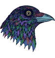 crow - colorful graphic artwork with wold bird vector image