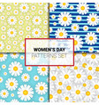 set seamless pattern with chamomile flowers on vector image