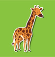 a giraffe sticker on green background vector image vector image