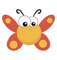 chubbutterfly on white background vector image vector image