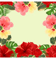 frame bouquet with tropical flowers floral vector image vector image