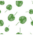 palm leaf seamless pattern vector image