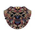 pug head entangle stylized vector image vector image
