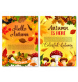 autumn hello fall seasonal greeting card vector image vector image