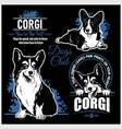 corgi - set for t-shirt logo and template vector image vector image