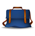 Blue bag vector image vector image