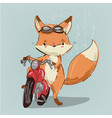 cute fox on bike vector image vector image