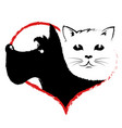 dog and cat in heart vector image vector image