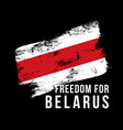 inscription freedom for belarus against the vector image vector image