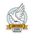 juneteenth day celebrate freedom pigeon liberty vector image