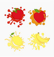 lemon tomato apple vector image vector image