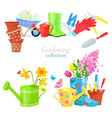 lovely natural collection of spring composition vector image vector image