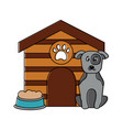 pet dog sitting with house food vector image vector image