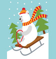 polar bear on sled vector image