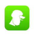 poodle dog icon digital green vector image