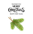 christmas tree branch isolated vector image