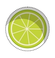 lemon citrus fruit icon vector image vector image