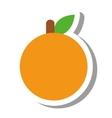 orange citrus fruit isolated icon vector image