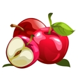 Ripe red apples and half one vector image