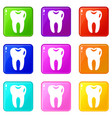 tooth set 9 vector image vector image