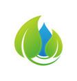 water leaf vector image