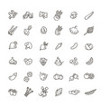 basic vegetables thin line icon set vector image