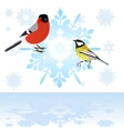 Bullfinch and tits on a snowflake vector image