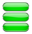 green oval buttons with chrome frame vector image vector image