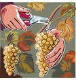male hand with shears captures a cluster of ripe vector image vector image