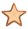 starfish animal isolated icon vector image vector image