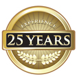 Twenty Five Years Experience Gold vector image vector image