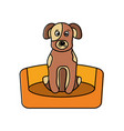 dog sitting in the bed pet animal vector image vector image
