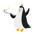 flat style penguin selfie isolated on white vector image vector image