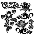 floral ornament set vector image vector image
