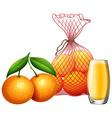 Fresh orange and orange juice vector image vector image