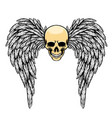 glossy head with big angle wings vector image vector image